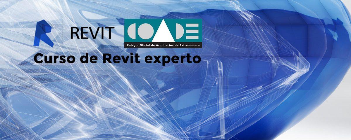 Revit COADE Experto BIM Revit Cáceres Badajoz